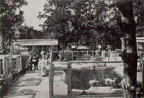 Der zoologische Garten in Kiew, Anfang des 20. Jahrhunderts