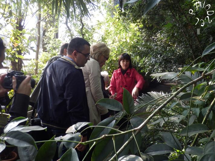 Während der Führung durch den botanischen Garten der Universität Kyjiw