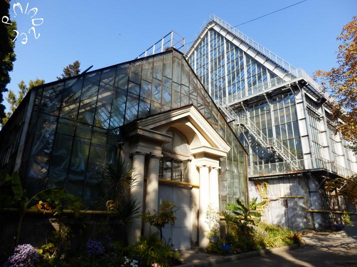 """Eines der Gewächshäuser im """"Fomin"""" Garten der Kiewer Universität"""